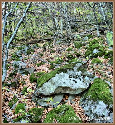 Камни стен