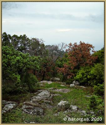 Вид на Лимена-Кале