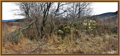 Руины школы