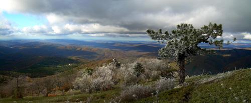 Страж горы Басман