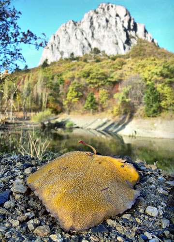 Осень над Алупкой