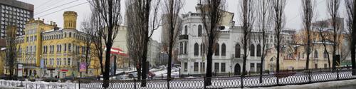 Киевские подснежники