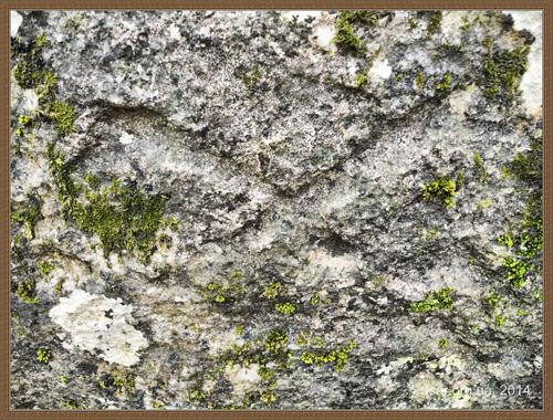 Петроглифы Алимовой и Змеиной балок