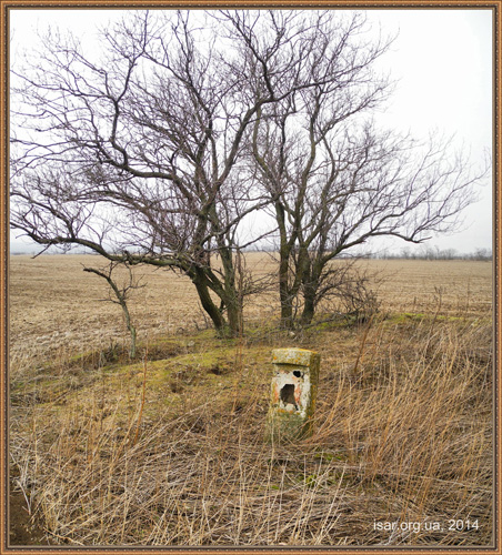 Дерево на старом кургане